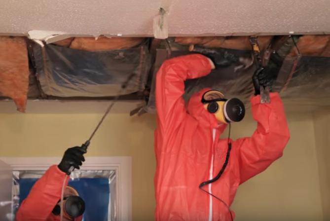Asbestos Ceiling Insulation Survey