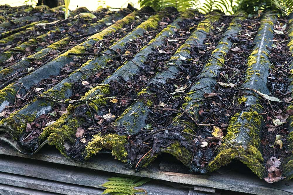 Old Moss Covered Asbestos