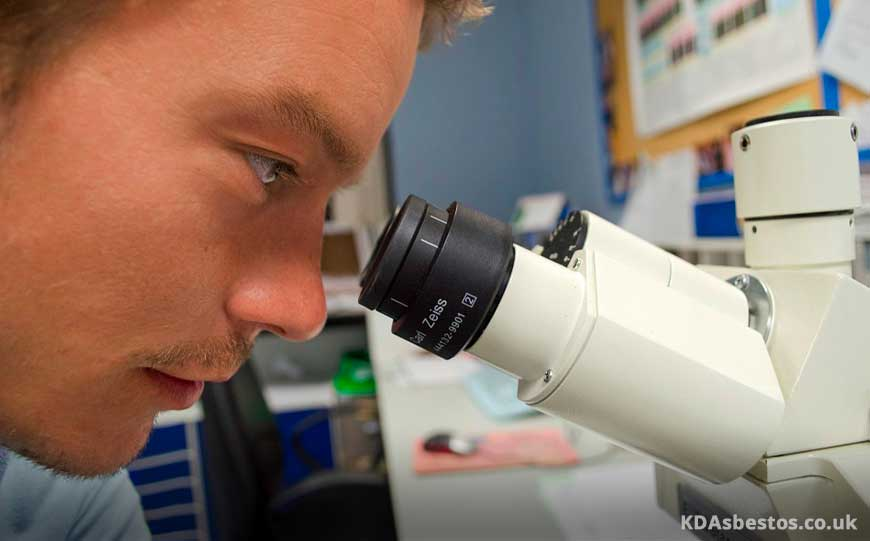 Using Microscope