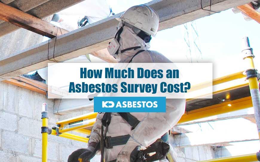 Cost of Asbestos Survey